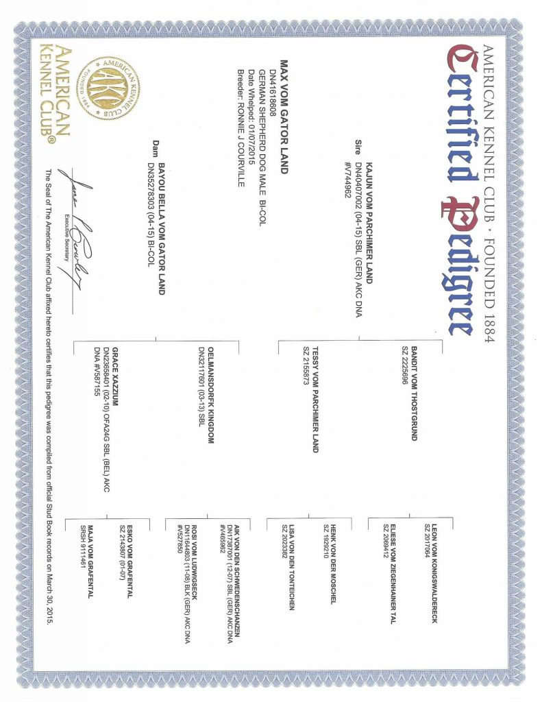 Certified pedigree scaled image for PDF link